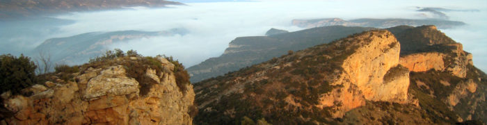 L'extrem oest de la Pala del Coll vist des de la Pala Alta
