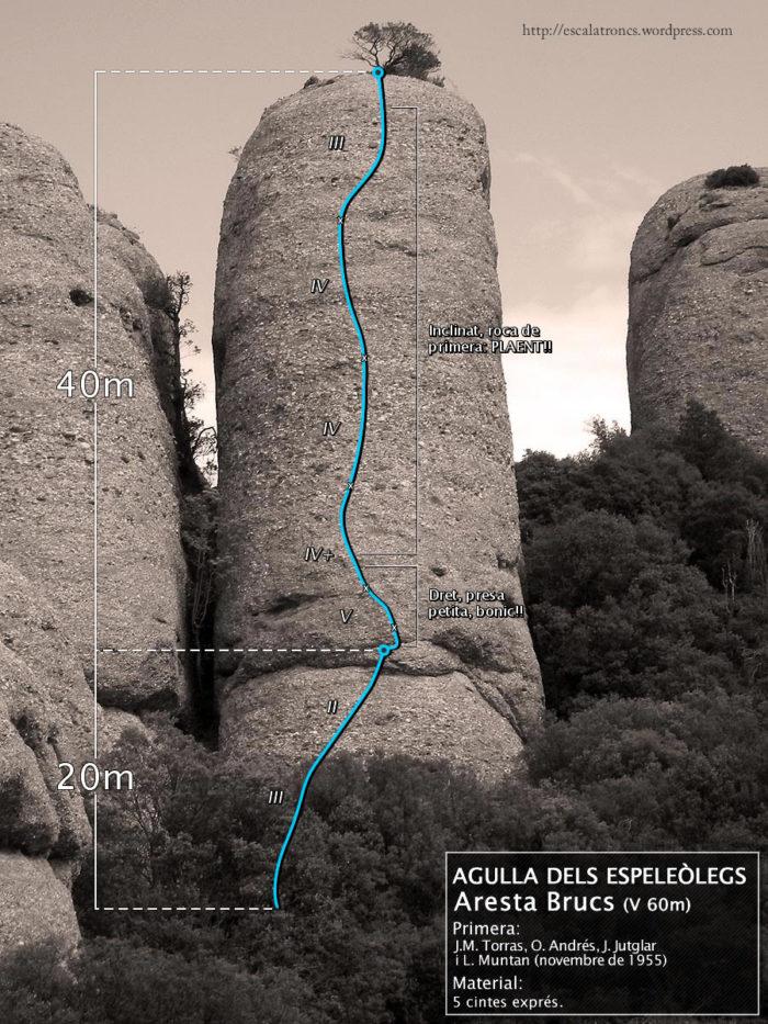 Ressenya de la via Aresta Brucs a l'Agulla dels Espeleòlegs (Agulles-Montserrat)