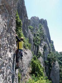 El Vianant a la Paret de Santa Cecília