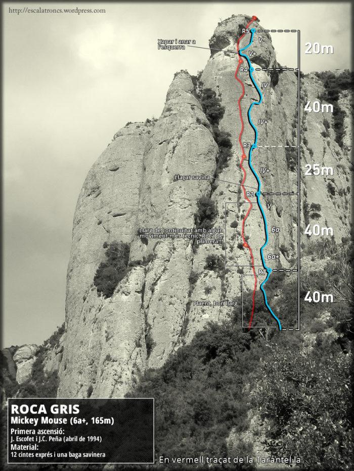 Ressenya de la via Mickey Mouse a la Roca Gris