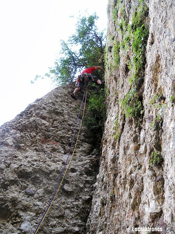 Primer llarg, molta herba i poca roca (Foto: Cesc R.)