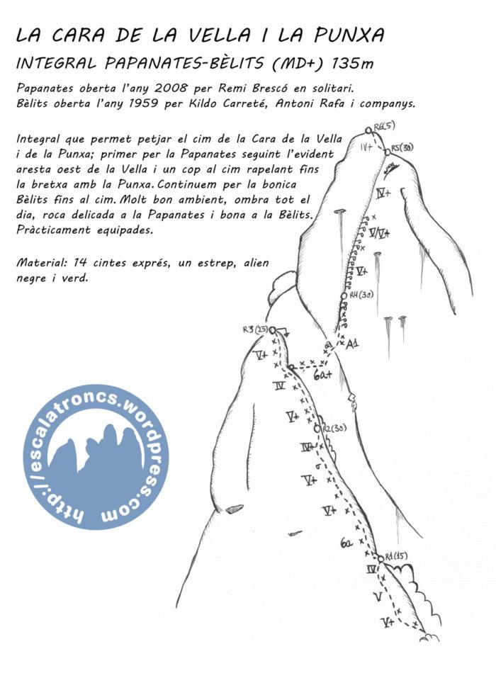 Integral Papanates-Bèlits als Flautats