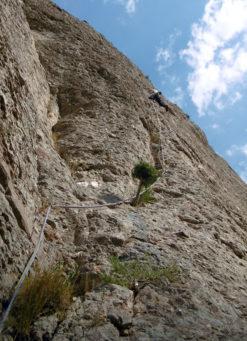 Little Bighorn a la Roca Gris